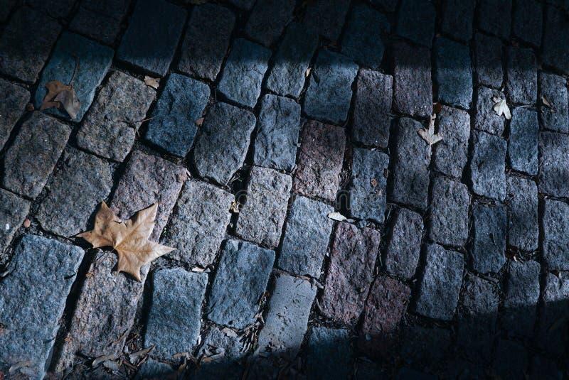 Vista orizzontale di un pavimento del ciottolo con l'entrata di luce solare immagine stock