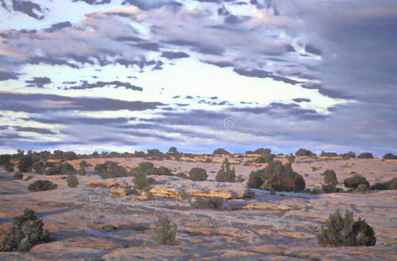 Vista painterly alterada Digital do monumento nacional de Garganta de Chelly, o Arizona imagem de stock royalty free