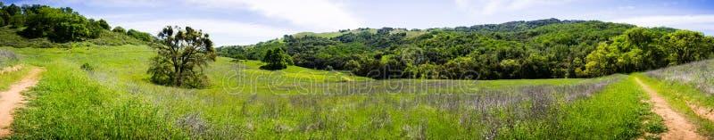 Vista panorámica de colinas y de valles del Rancho nuevamente abierto San Vicente Open Space Preserve, parte del parque del conda fotografía de archivo