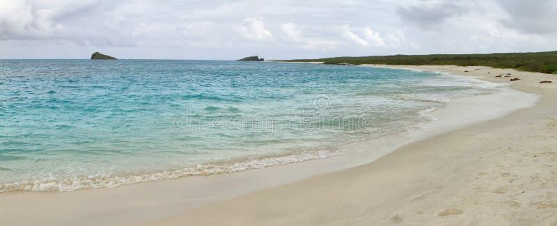 Vista panorámica de la playa blanca de la arena de la bahía de Gardner foto de archivo libre de regalías