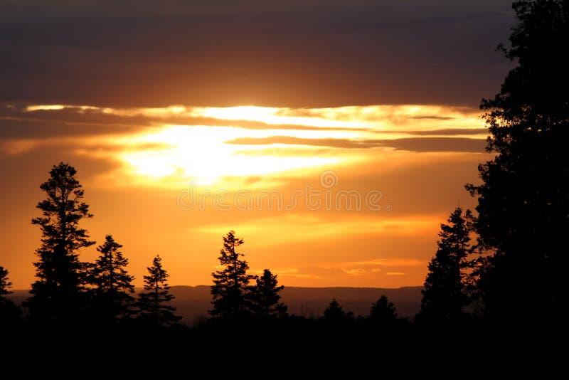 Vista panorámica de la puesta del sol romántica hermosa en el paisaje/los E.E.U.U. del bosque fotos de archivo