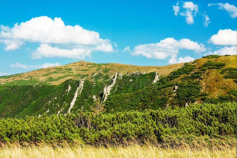 Vista panorámica de las montañas rocosas de los Cárpatos, Ucrania imagen de archivo libre de regalías