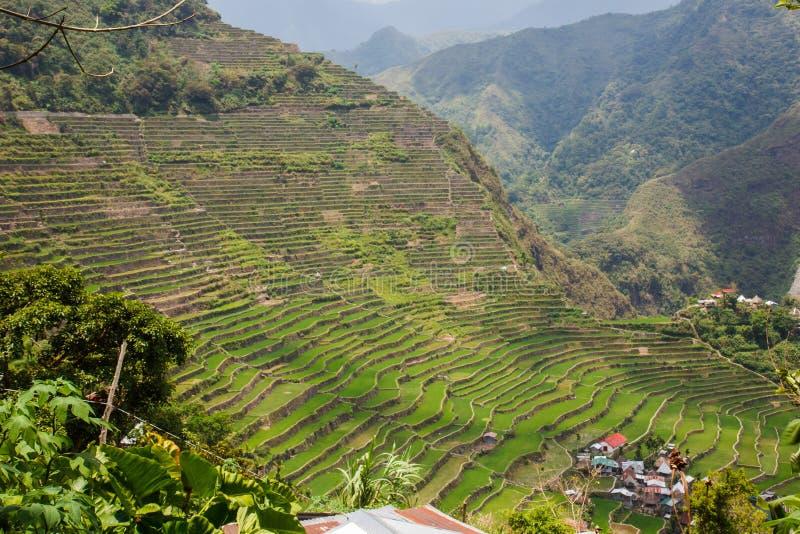 Vista panorámica de las terrazas del campo del arroz de Batad en la provincia de Ifugao, Banaue, Filipinas fotos de archivo