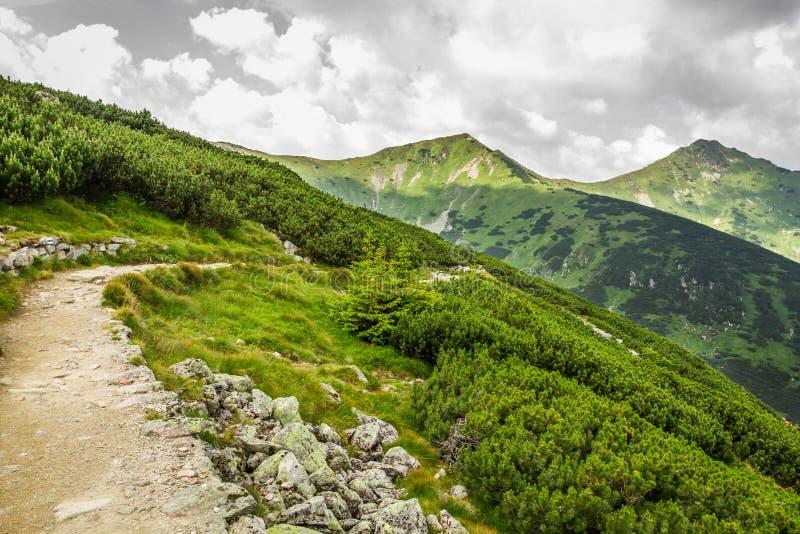 Vista panorámica de los picos de montaña del rastro fotografía de archivo libre de regalías