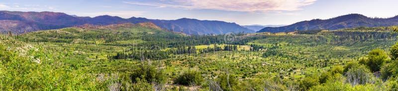 Vista panorámica de los prados y de los bosques verdes hermosos en el parque nacional de Yosemite, montañas de Sierra Nevada, Cal fotos de archivo