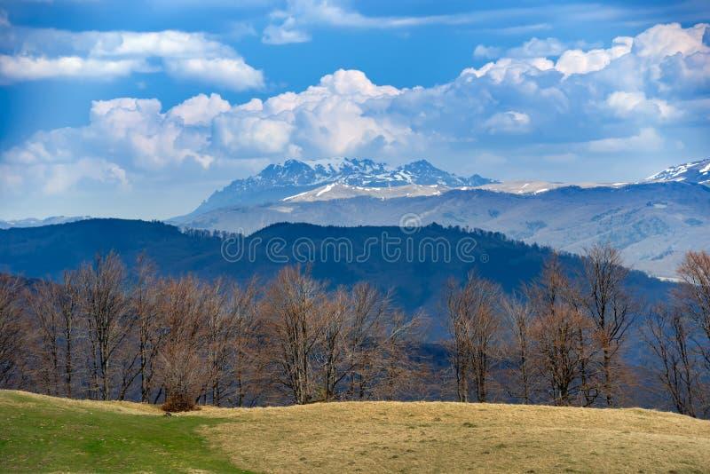 Vista panorámica de un paisaje natural de las montañas poderosas de Ciucas en los Cárpatos rumanos Paisaje alpino del otoño con fotografía de archivo libre de regalías