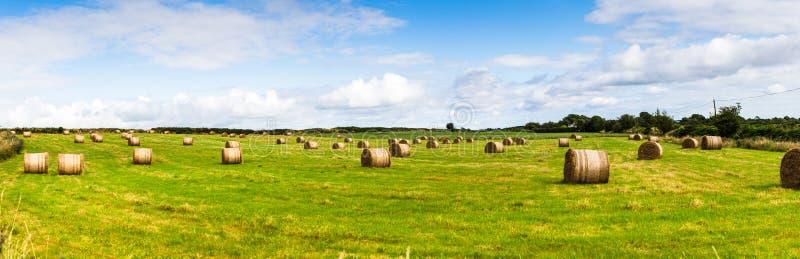Vista panorámica de un paisaje rural con los rollos de la extensión de la bala de heno a través del campo imágenes de archivo libres de regalías