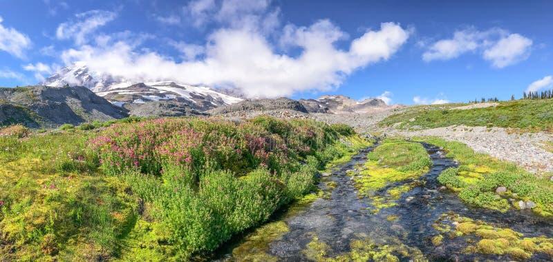 Vista panorámica de una cala más lluviosa y del glaciar del Mt en un su hermoso imagen de archivo libre de regalías