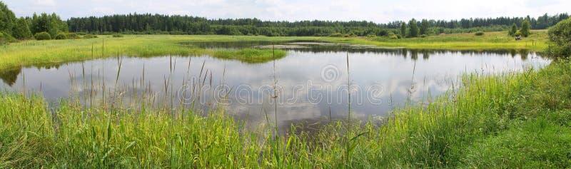 Vista panorámica de una charca con los bancos verdes, demasiado grande para su edad con las cañas y otras plantas del cercano-agu imágenes de archivo libres de regalías