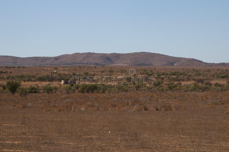 Vista panorámica del prado con el molino de viento, los tanques de agua y las ovejas fotografía de archivo libre de regalías