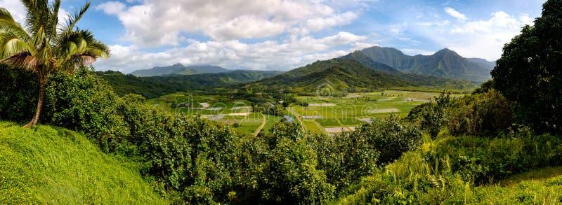 Vista panorámica del valle de Hanalei con los campos y las montañas del taro, imagenes de archivo