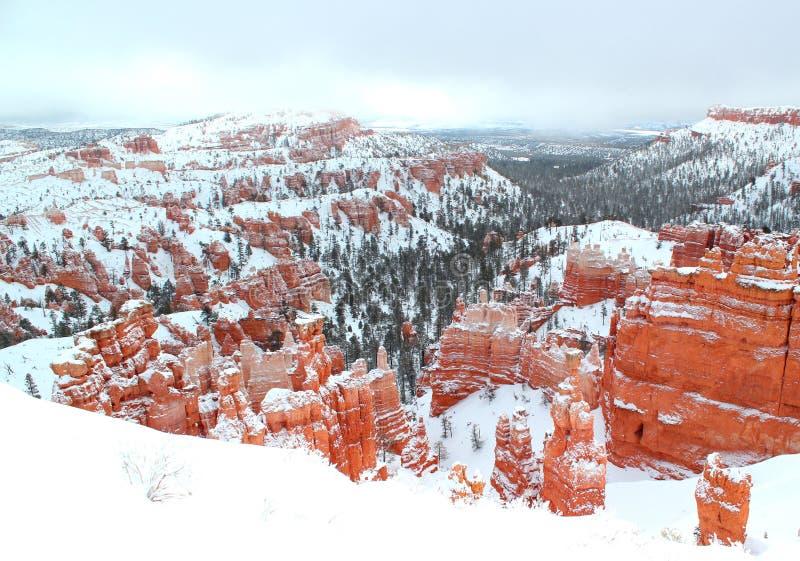 Vista panorámica hermosa del barranco Nationalpark de Bryce con nieve en invierno con las rocas rojas/Utah/los E.E.U.U. fotos de archivo libres de regalías