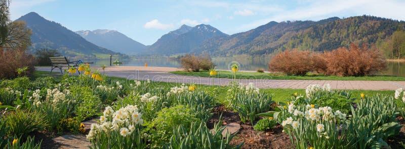 A vista panorâmica ao schliersee do lago com termas jardina na mola imagem de stock royalty free