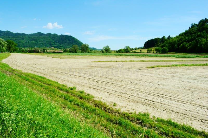Vista panorâmica bonita da mola à paisagem rural com grande campo cultivado no parque natural em um dia ensolarado imagens de stock royalty free