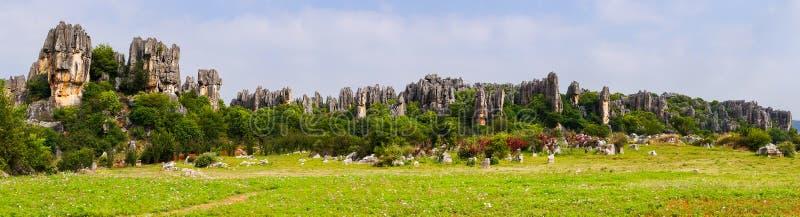 Vista panorâmica da floresta de pedra dos pináculos da pedra calcária de Shilin - Yunnan, China fotografia de stock
