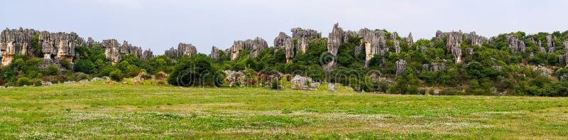 Vista panorâmica da floresta de pedra dos pináculos da pedra calcária de Shilin - Yunnan, China fotografia de stock royalty free