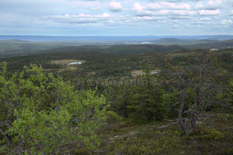 Vista panorâmica de Storvarden na reserva natural Tandoevala em Dalarna, Suécia imagens de stock