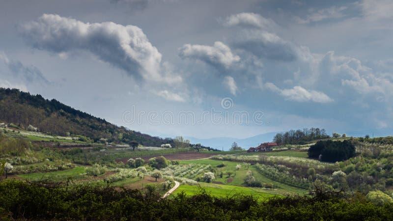 Vista panorâmica de um dia de mola na paisagem rural sérvio fotografia de stock