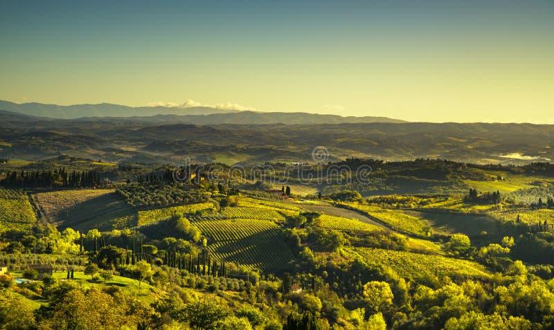 Vista panorâmica do campo e dos vinhedos de San Gimignano imagem de stock
