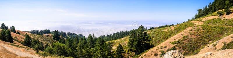 Vista panorâmica dos montes e dos vales do parque estadual do Mt Tamalpais, mar das nuvens que cobrem o Oceano Pacífico no fundo; foto de stock royalty free