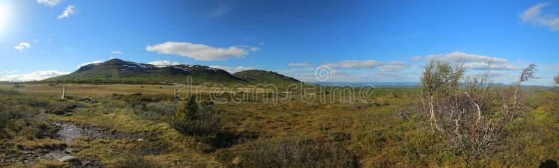 Vista panorâmica dos pântanos e da montanha Ansaett na Suécia foto de stock royalty free