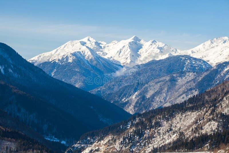 Vista panorâmica em montanhas do inverno da neve Montanhas de Cáucaso Sva foto de stock