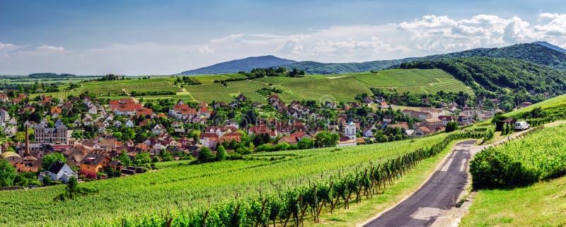 Vista panorâmica larga a Alsacevineyards, França foto de stock