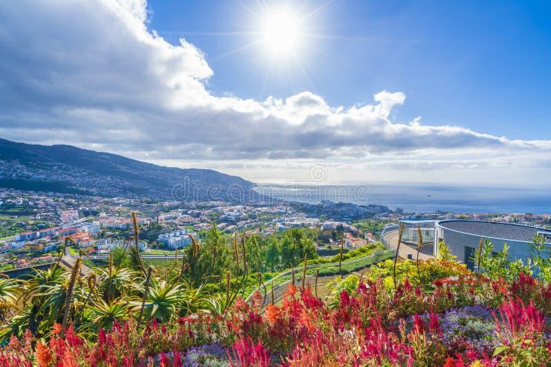 Vista panorâmica sobre Funchal, de dos Barcelos de Pico, ilha de Madeira, Portugal fotografia de stock