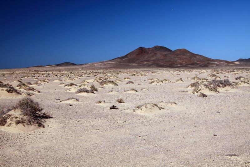 Vista panorâmica sobre a planície árida abandonada com os montes pequenos incontáveis da areia em Fuerteventura, Ilhas Canárias fotos de stock royalty free
