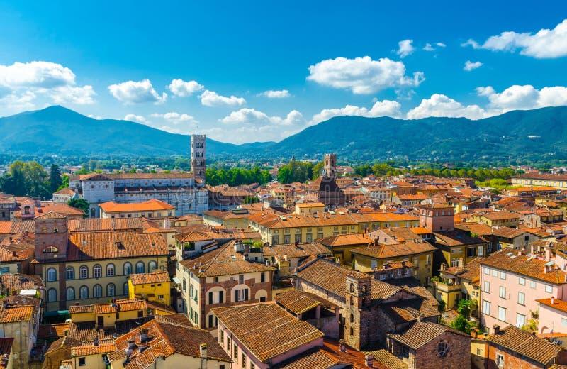 A vista panorâmica superior aérea da cidade medieval Lucca do centro histórico com construções velhas, terracota alaranjada típic fotos de stock royalty free