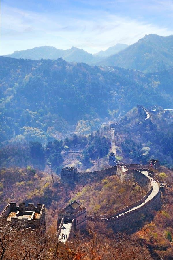 Vista panorâmica vertical da seção de Mutianyu do Grande Muralha de China, cercado pela vegetação verde e amarela fotografia de stock royalty free