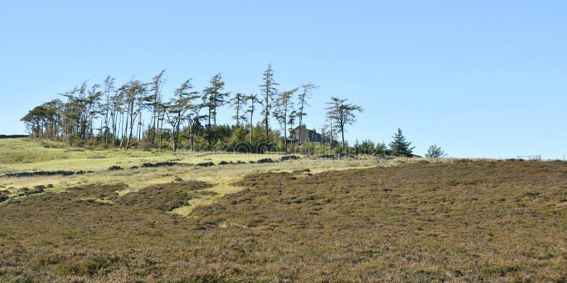 Vista panorâmico à casa de Skiddaw, distrito do lago foto de stock