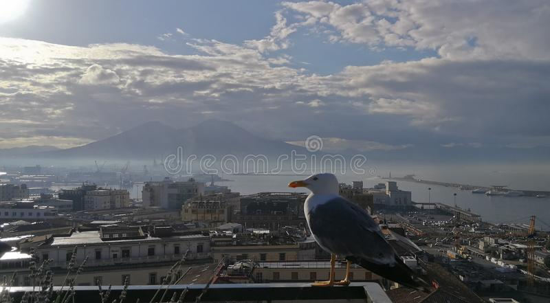 Vista panorâmica de Nápoles imagem de stock