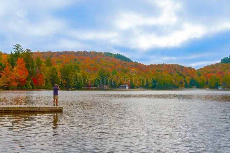 Vista panoramica al parco in Ontario, Canada del Algonquin immagini stock libere da diritti