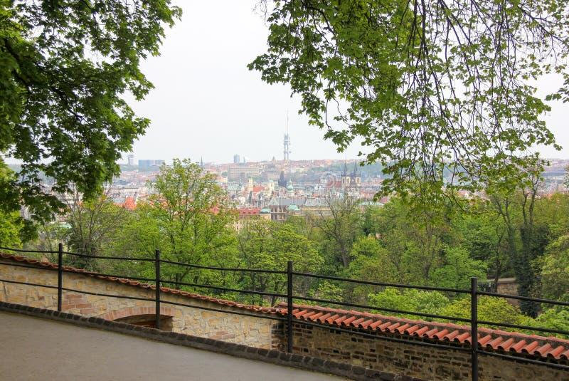 Vista panoramica dal punto di vista in Hradcany, Praga, repubblica Ceca, erba verde su priorità alta fotografie stock libere da diritti