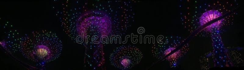 Vista panoramica dei giardini nella baia in Sirgapore alla notte fotografia stock libera da diritti