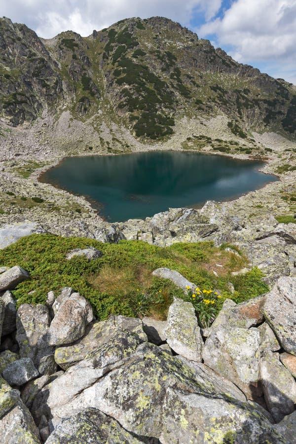 Vista panoramica dei laghi Musalenski e di Flores giallo, montagna di Rila fotografia stock libera da diritti