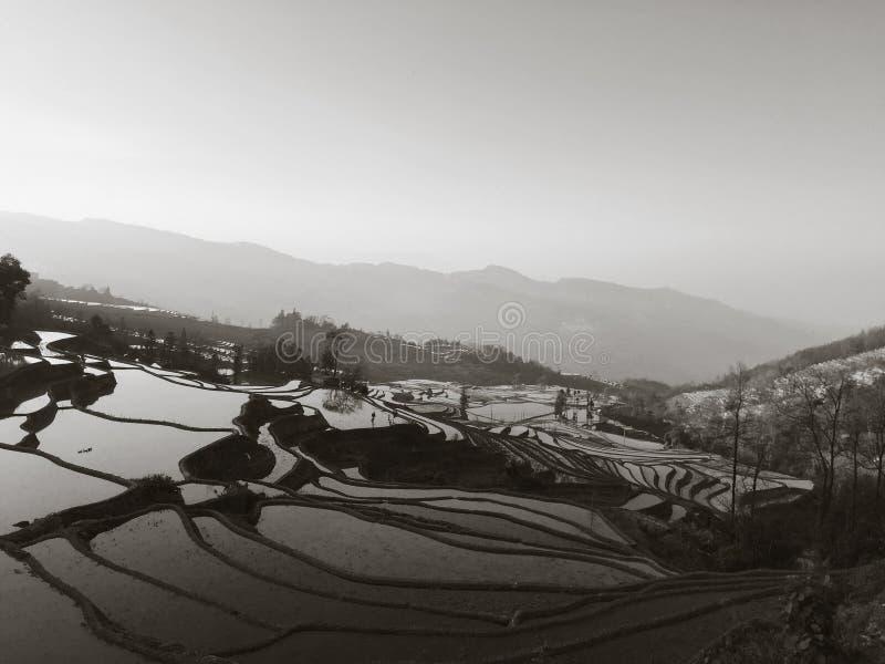 Vista panoramica dei terrazzi del riso di Yuanyang al tramonto fotografia stock