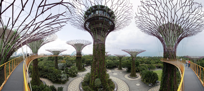 Vista panoramica del boschetto di Supetree ai giardini dalla baia a Singapore fotografie stock
