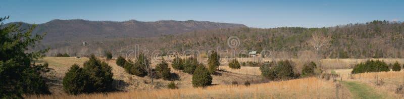 Vista panoramica del parco nazionale di Shenandoah, la Virginia fotografie stock