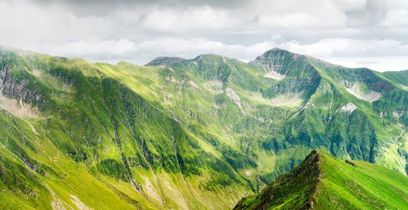 Vista panoramica della montagna carpatica fotografie stock