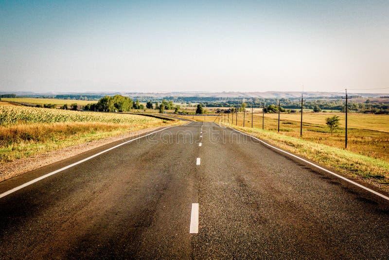 Vista panoramica della strada asfaltata della campagna che entra in distanza e campo di grano dorato e dei girasoli gialli fotografia stock libera da diritti