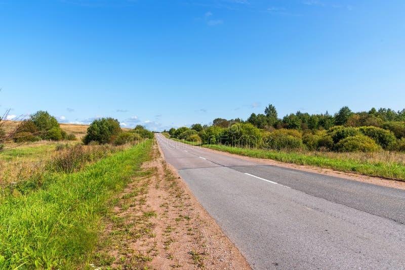 Vista panoramica della strada fra la foresta fotografia stock libera da diritti