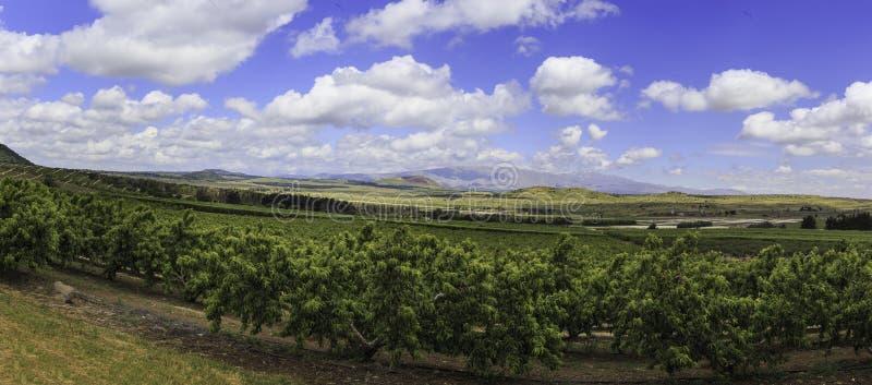 Vista panoramica delle alture del Golan fotografia stock