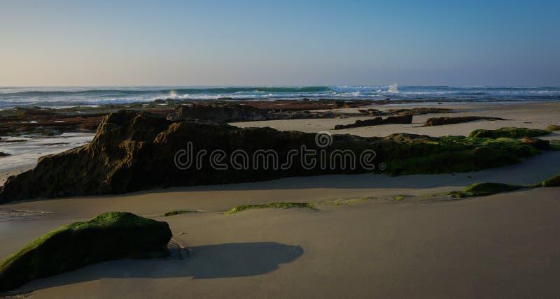 Vista panoramica delle formazioni rocciose lineari esposte a bassa marea lungo la costa del Pacifico immagine stock libera da diritti