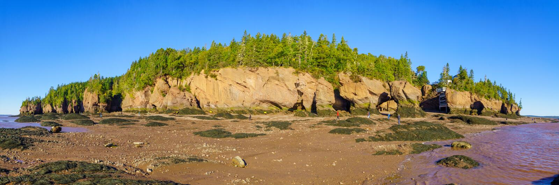 Vista panoramica delle rocce di Hopewell a bassa marea immagine stock libera da diritti