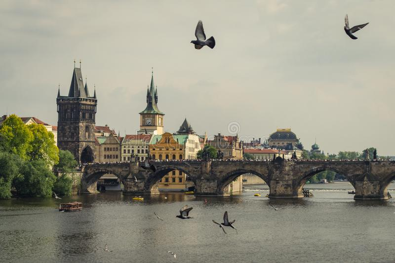 Vista panoramica di Charles Bridge Karluv famoso più e di vecchia città a Praga, repubblica Ceca immagine stock libera da diritti