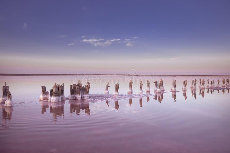 Vista panoramica di Salt Lake rosa variopinto al tramonto terra della natura immagini stock libere da diritti