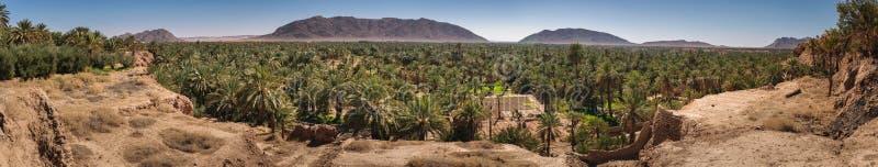 Vista panoramica sopra l'oasi delle palme da datteri, Figuig, Marocco immagine stock
