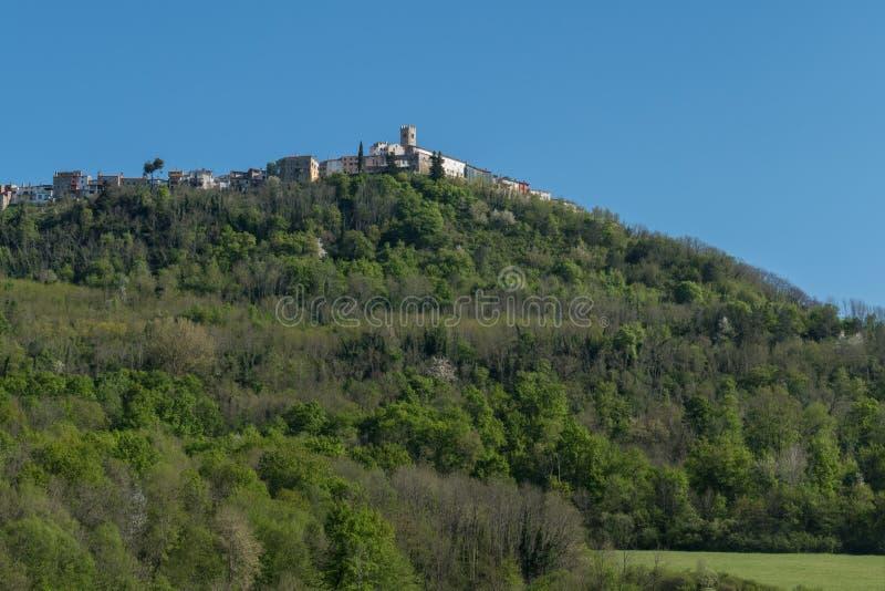 Vista panoramica su Motovun fotografie stock